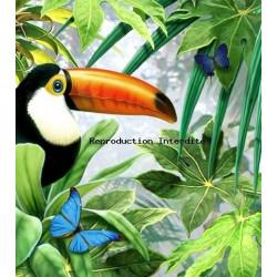 Image pour tableaux 3D format 30x40 cm Toucan GK3040011