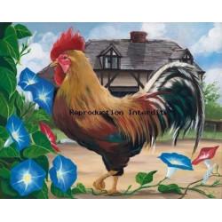 Image pour tableaux 3D - gk4050004 - 40x50 - coq