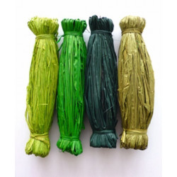 Raphia degrade vert 4x15g