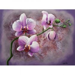 Image pour tableau 3D GK3040032 Orchidée rose sur fond violet - Format 30x40 cm.