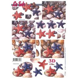 Carte 3D à découper -  étoiles de mer