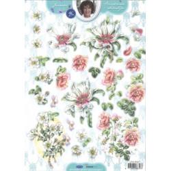 Carte 3D prédéc. - n°377 - Fleurs blanches