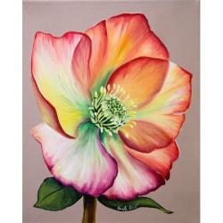Image pour tableaux 3D 24x30 cm Hellebore GK2430049