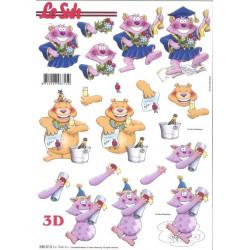 Carterie 3D Prédécoupée - Diplôme