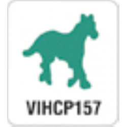Artemio perforatrice cheval