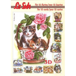 Carterie 3D LIVRE A5 - 12 cartes - Chats