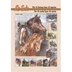 Carterie 3D LIVRE A5 - 12 cartes - Les chevaux