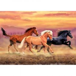 Image pour tableau 3D GK3040008 3 chevaux format 30x40cm