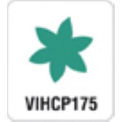 VIHCP175