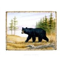 Images 3D avec les animaux format 20x25 cm