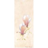 Images 3D sur les fleurs Format 20x50 cm
