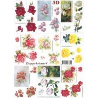 Cartes 3D Fleurs